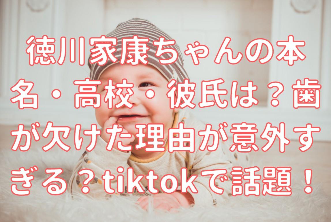 Youtuber 徳川 家康