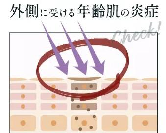 年齢肌の炎症画像