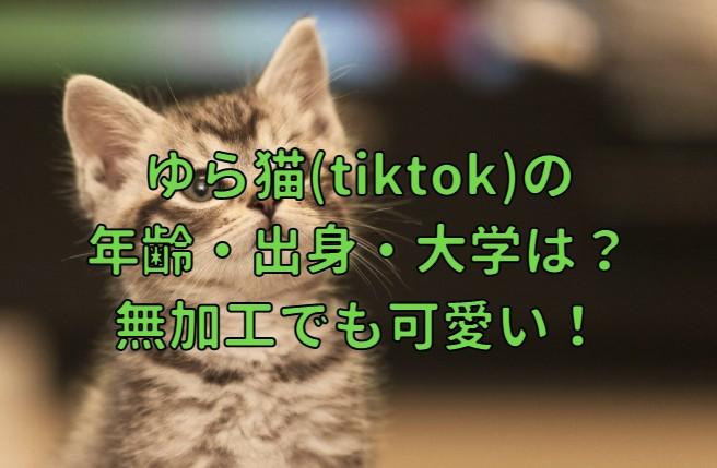 ゆら猫(tiktok)の年齢・出身・大学・無加工でも可愛い