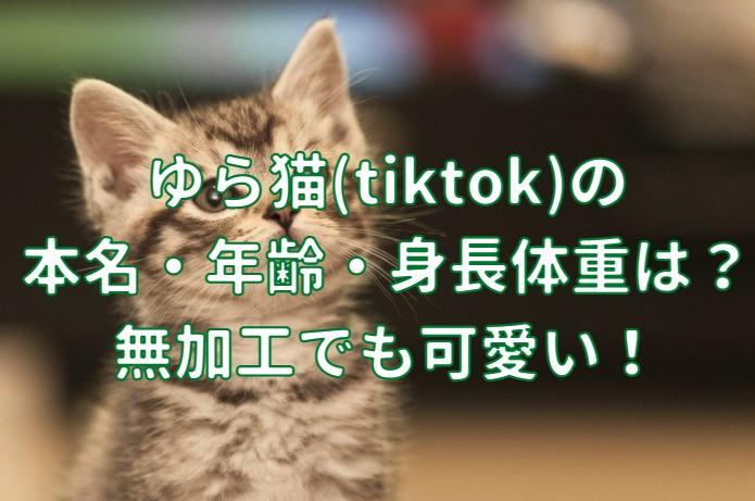 ゆら猫(tiktok)の 本名・年齢・身長体重の記事のアイキャッチ画像