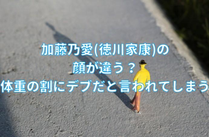 加藤乃愛(徳川家康)の 顔が違うの記事のアイキャッチ画像
