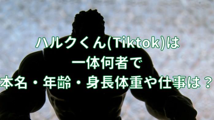 ハルクくん(Tiktok)は一体何者で本名・年齢・身長体重や仕事の記事のアイキャッチ画像