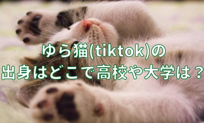 ゆら猫(tiktok)の出身はどこで高校や大学の記事のアイキャッチ画像