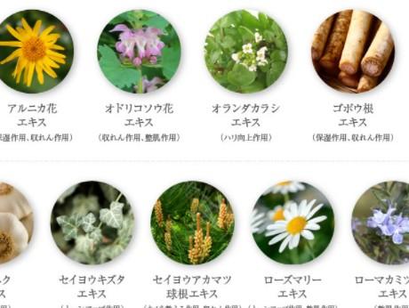 9種の食物エキス